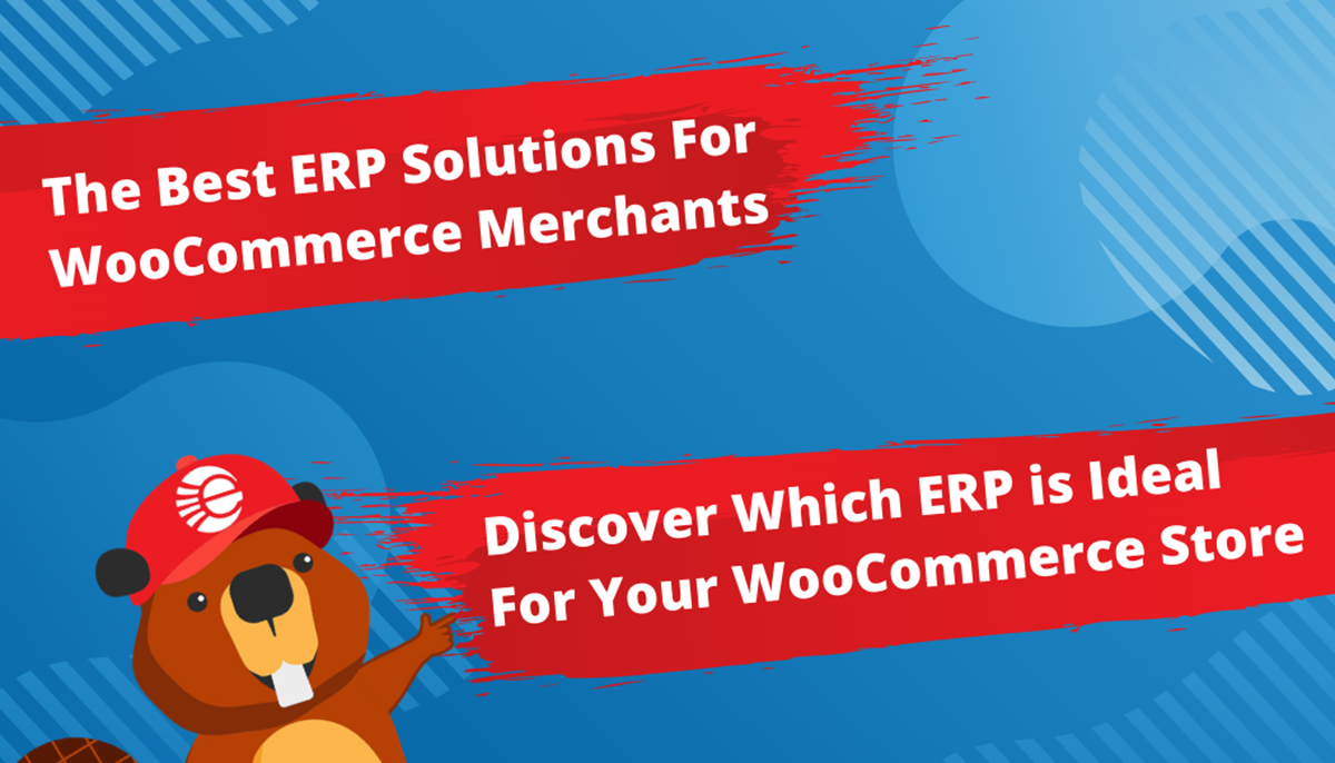 The Best ERP Solutions For a WooCommerce Store