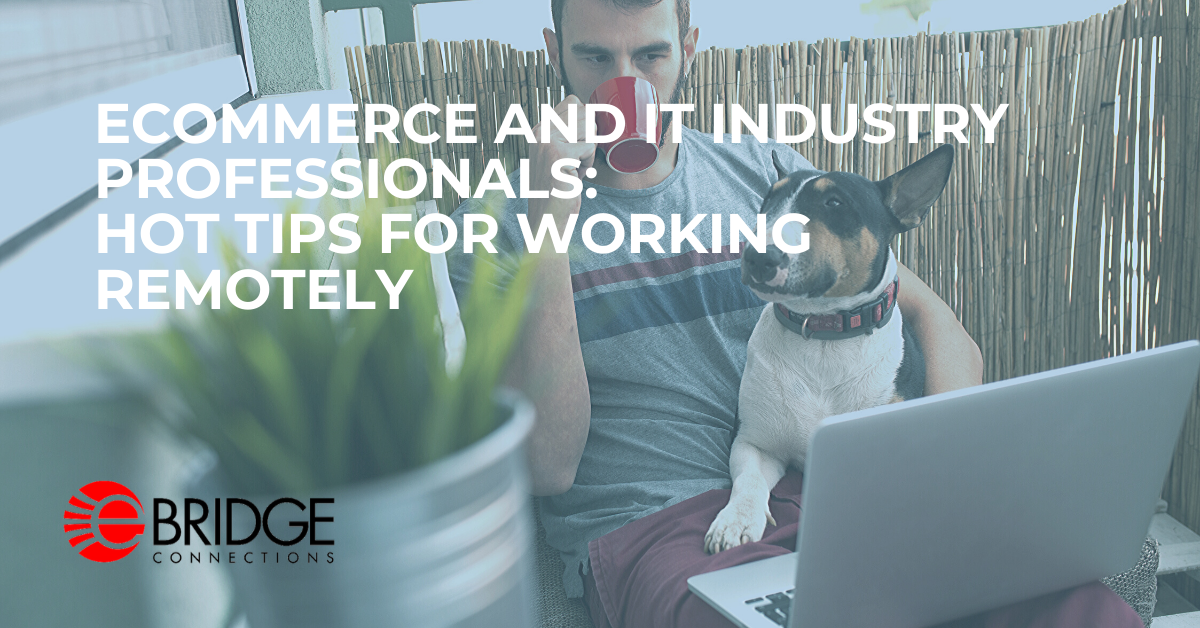 Tips On Working From Home (eCommerce and IT Professionals)